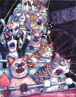 jonathon-heath_rollercoaster-cats